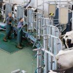 DairyFarming_AutoRotor_Magnum_40_2_1200x675px.jpg