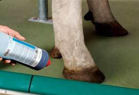 gea-animal-foot-care-min