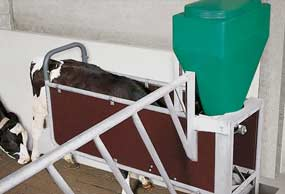 gea-dairyfeed-f4700-concentrate-feeders-min