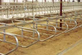 gea-single-beam-freestall-mounting-system-min